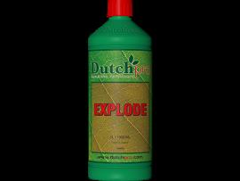 Explode Dutch Pro