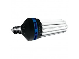STREET LIGHT 6400K BLUE CFL